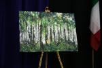 Il bosco del Cansiglio a fine estate